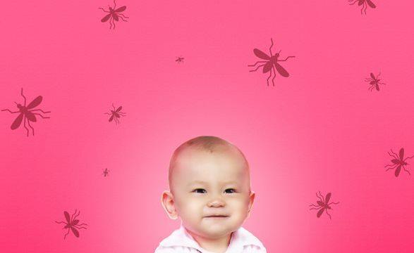 Cara Mengusir Nyamuk Di Kamar Bayi dengan Ampuh