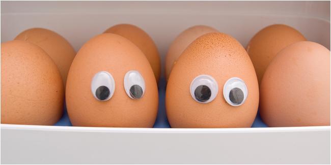 Cara Menyimpan Makanan di Kulkas yang Benar